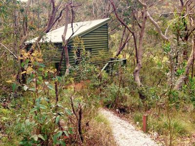 Photo for Bush Cabin Bliss Blue Mountains!
