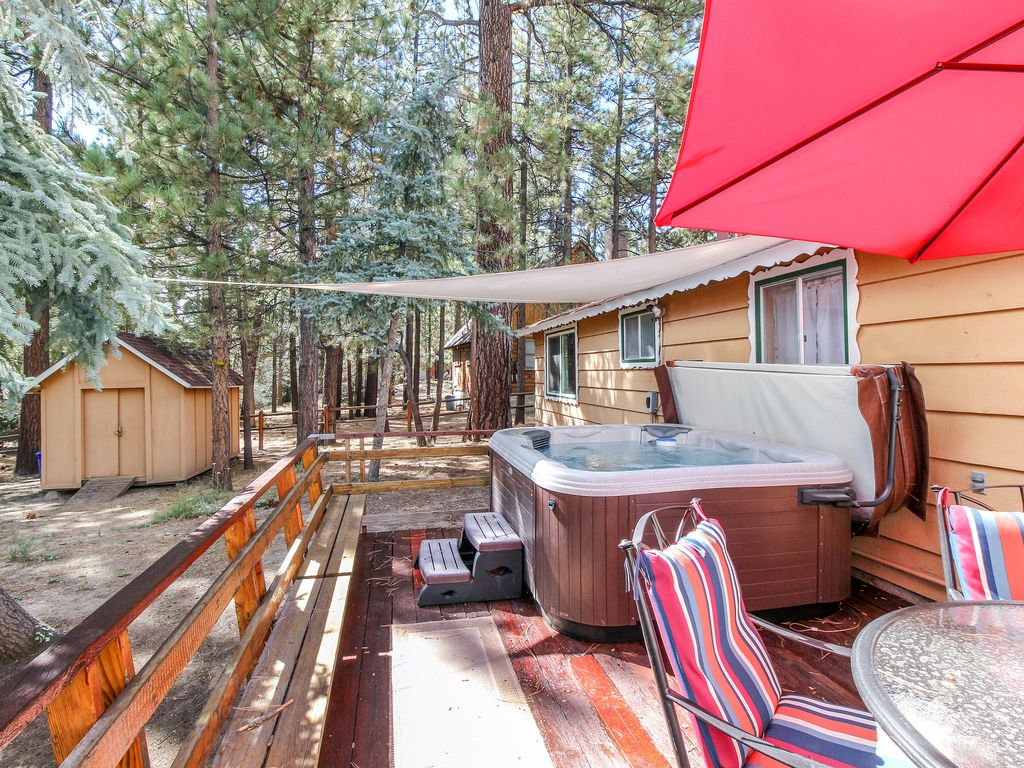 rental bear breezy pet cabins cozy friendly big cabin free wifi