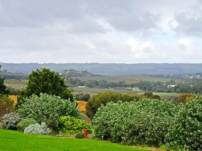 Photo for McLaren Vale Avocado Farm