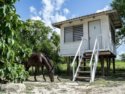 Photo for Tree top cabana in a tropical horse farm with shared bathrooms
