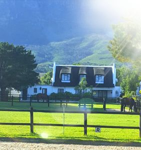 Photo for Beautiful cosy cottage in the heart of green Noordhoek