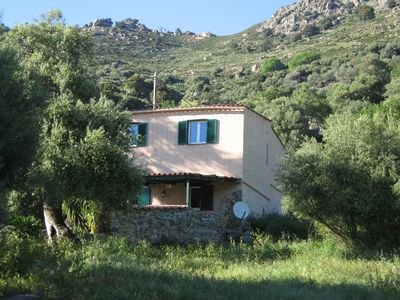 Photo for Rental House Calvi / Lunghignano