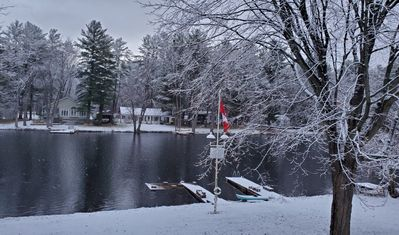 Photo for Beautifully Designed Accessible Cottage on the Trent Severn River