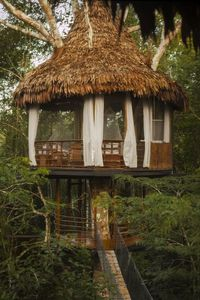 Photo for Treehouse 9 45 feet -Riverview sleeps 3 in 1 king or 2 twins +cot