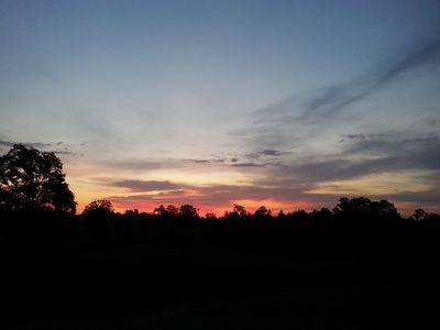 Another gorgeous sunset from the back pasture