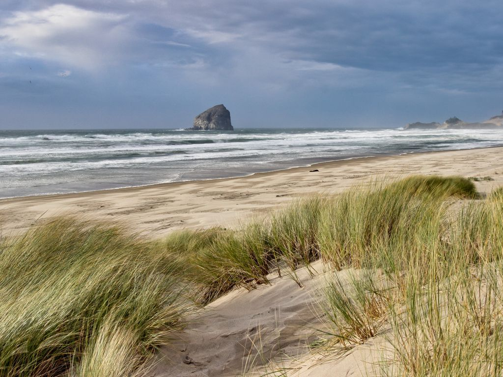 Dog Friendly Vacation Rental Oregon Coast