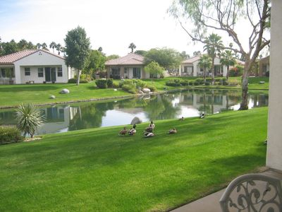 Photo for Lakefront Rental- Mission Hills W/Private Jacuzzi-Golf Cart