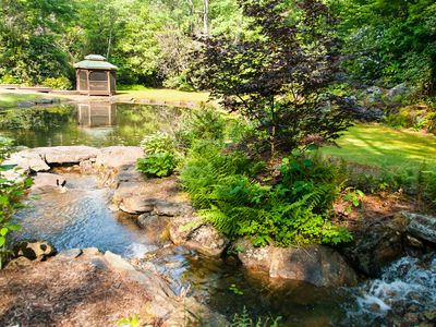 Photo for Mountain Home with Private Stream, Waterfalls and Pond