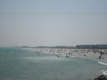Ocean Woods, Cape Canaveral, FL, USA