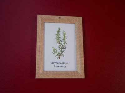 Photo for Kalamata Garden Rosemary