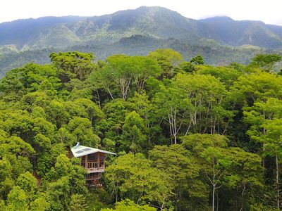 Photo for Stunning Luxury Cabin in Rainforest with Incredible Views