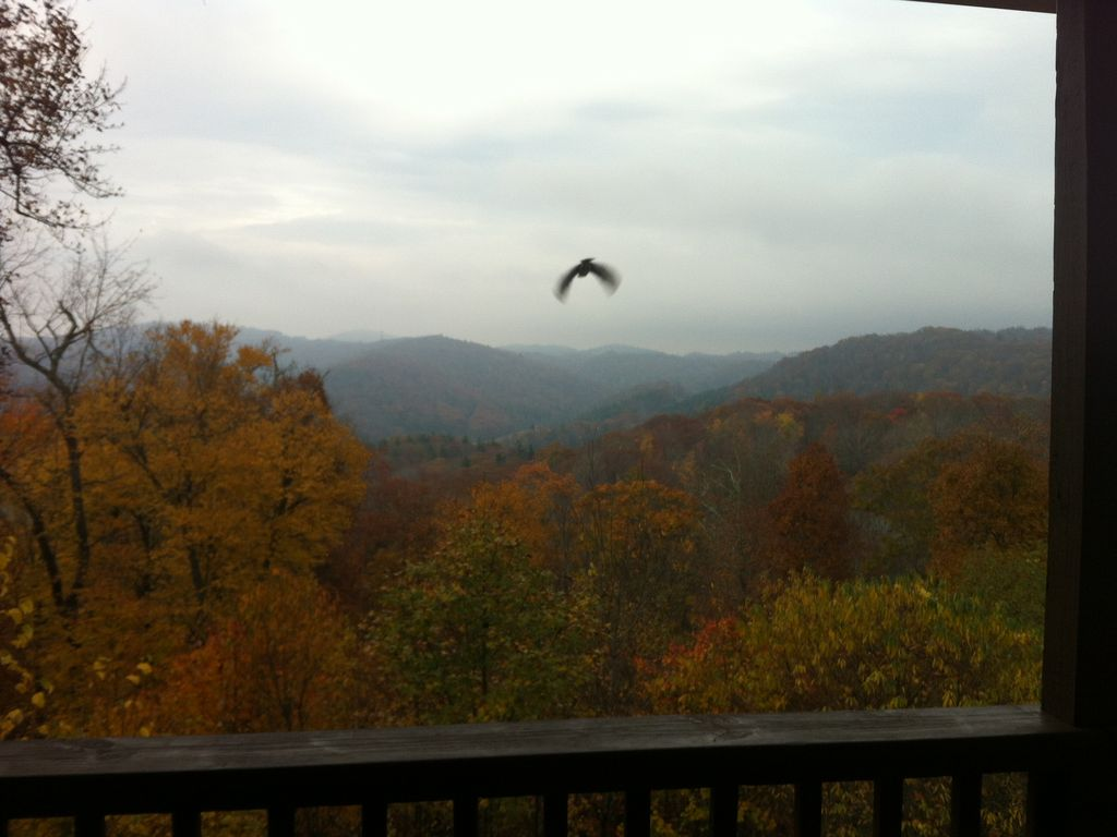 Mountainside cottage great views homeaway blowing rock for App ski mountain cabin rentals