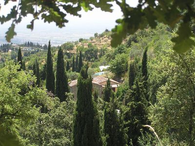 Nestled into the Cortona hillside. Tranquil, expansive & with view to die for.
