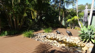 Beautiful tropical garden with lots of privacy