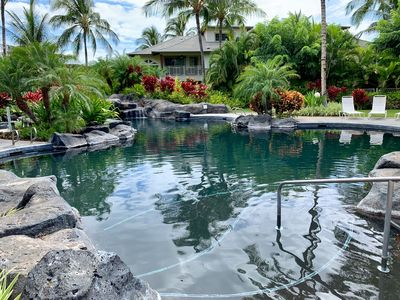 Photo for Experience Tropical Serenity at the Palm Villas Unit I-2