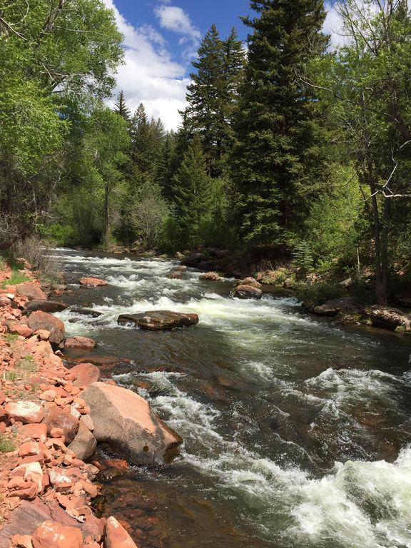 Lazy bear cabin near river and ruedi reservoir gold for Best fishing in colorado
