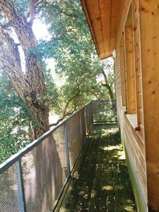 Photo for Capbreton. Holiday house, pleasant and functional. Large garden with trees.