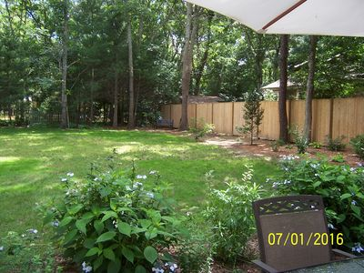 Backyard -looking away from House