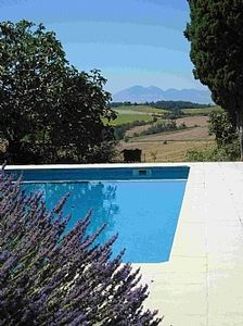 Lavender, pool and Pyrenees