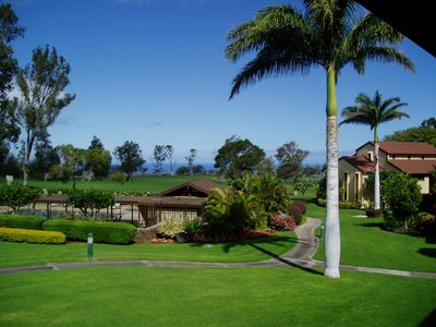 Relaxing green landscape with gorgeous Queen Palm tree view from lanai