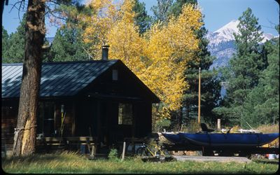 Photo for Forest Cabin situated within a short walk, or 1 minute drive, to National Forest