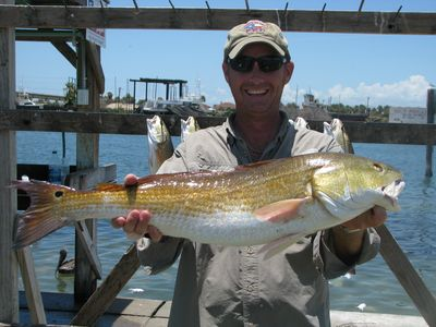 Nearby to Areas Finest fishing: Need a guide?  We have a #.