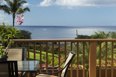 Enjoy whale watching from the lanai & living room!