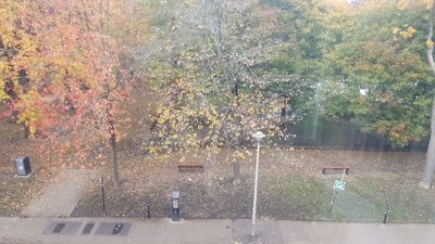 Best Location Overlooking Square St. Louis, 2 Minute Walk To Metro, Elevator