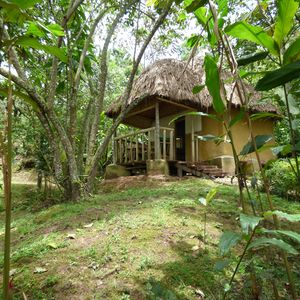 Photo for NSHONGI FOREST CAMP ideally situated just 5 minutes walking from UWA office