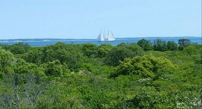 Photo for Martha's Vineyard-water views, beaches nearby, quiet road.