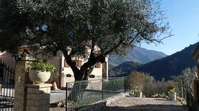 Photo for Apartment in villa, 3 rooms 76m2, facing south, with private garden.