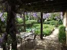 Wisteria Gite Patio Area