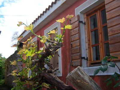 Photo for Holiday house Stara Frajla is newly renovated 105 years old stone house.