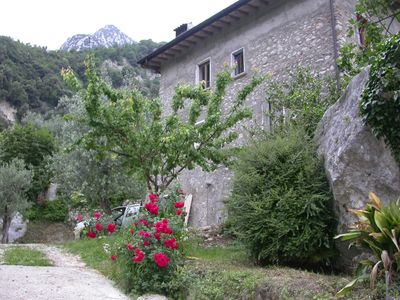 Photo for Old farmer's house among the olive trees, relaxation and nature of Lake Garda
