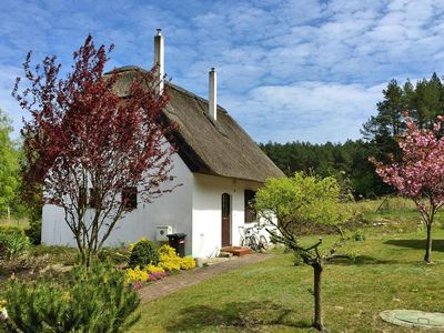 Photo for holiday home, Wiselka  in Um Swinemünde - 4 persons, 2 bedrooms