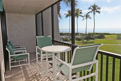 Gulf View from your screened in lanai