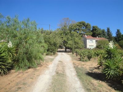 Photo for Top of Villa with large sea view terrace, in the heart of a vineyard