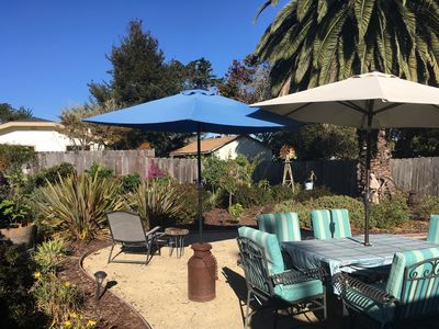 Landscaped fully fenced backyard with fruit trees and flowering shrubs.