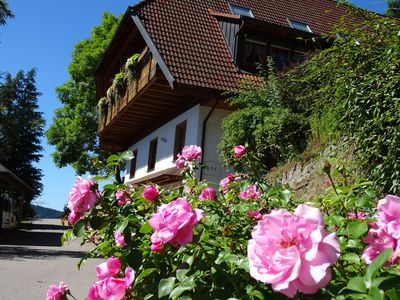 Photo for Farm animals in the Black Forest, 4 star wellness Non smoking apartment