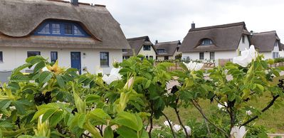 Photo for Semi-detached house under thatch with lake view,