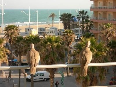 Photo for Canet-Plage center: Flat with beach view  large balcony for family up to 6 Peopl