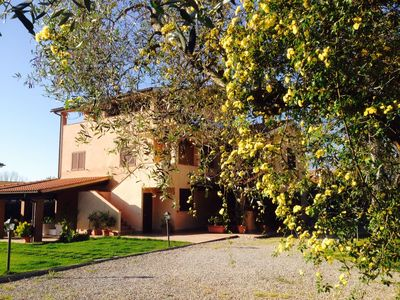 Photo for Apartments in the olive groves of Maremma - with olive trees and garden views