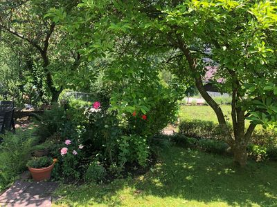 Photo for Fantastic apartment with garden, terrace and garage in the countryside