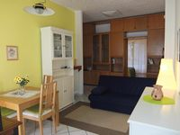 Comfortable and practical apartment with excellent host!