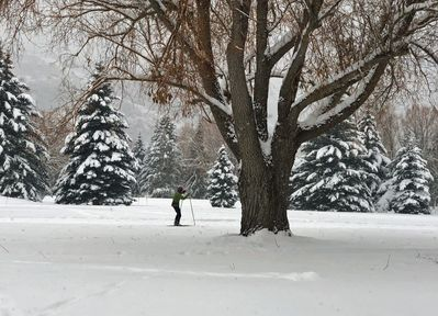 Taken from the back door of a skier on the X-country course.