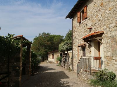 Photo for Authentic apartment on vineyard with swimming pool and view of forested Tuscany