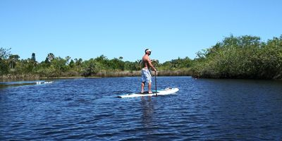 stand up paddleboarding is a great ay to see the beauty of nature!