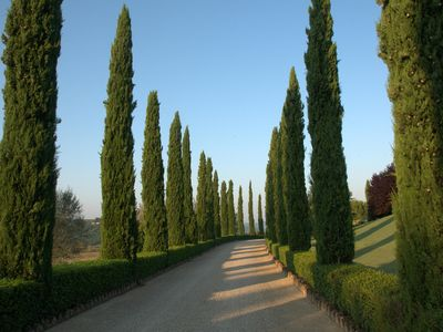 Photo for Your Special Stay in Chianti , Between Florence and Siena