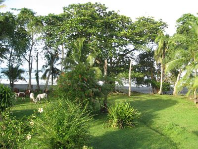 Photo for Puerto Viejo Oceanfront Hideaway on a Black Sand Beach - 2 Bedroom