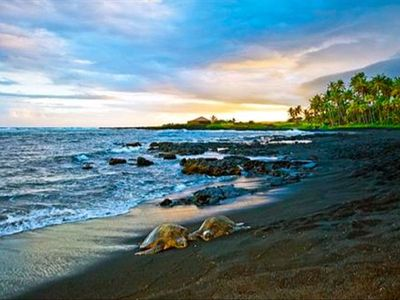 Photo for 1BR Condo Vacation Rental in Punaluu, Hawaii